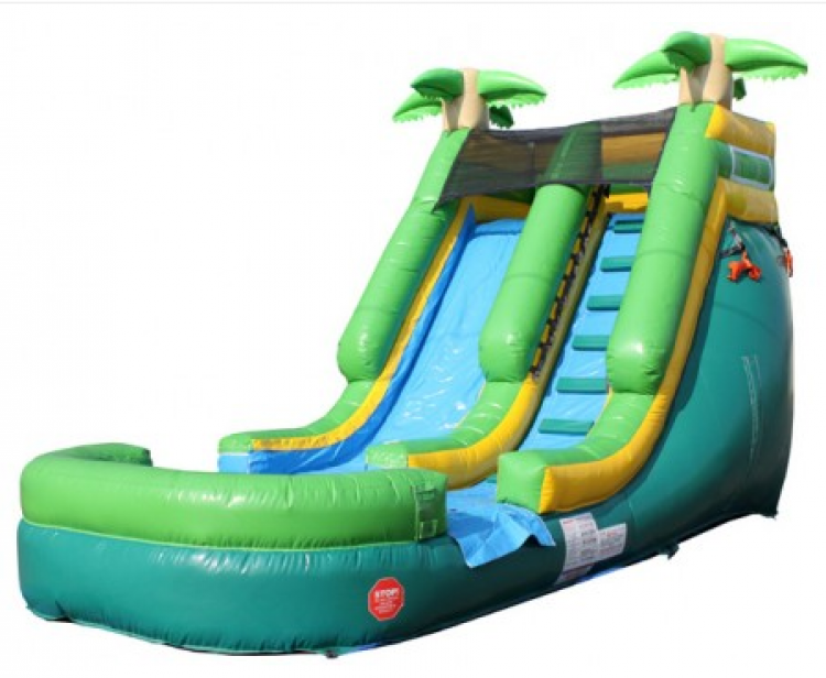 Palm Tree Water Slide (Dry Slide Use Permitted)